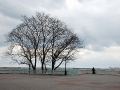 Приморский зимой