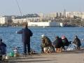 рыбаки на Приморском